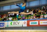 Championnats Suisses de Gym Artistique 2013