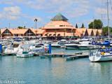 Vilamoura's Marina
