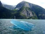 Ice Floe in Tracy Arm fiord