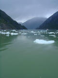 Floating ice in Tracy Arm Fjord
