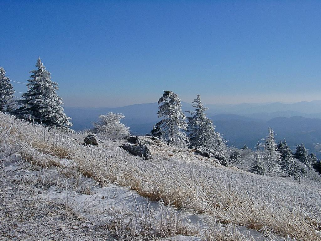 View from Whitetop Mountain over NC mountains