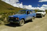 244 - Jeeps
