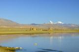 337 - Ancient Ruins of a Dzong
