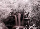 cincy zoo waterfall infrared