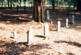 Graves of Two Wives And Children Of Lt. Col. Wiley Williams At Old Concord