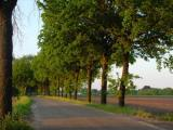 country-site-eersel