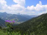 Kleinwalsertal - Blick ins Walsertal