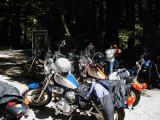 Women's Motorcycle Contingent  (WMC)