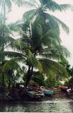 010223_Dominica
