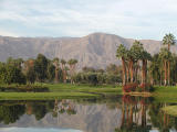 Palm Springs desert area...scenics and wildlife