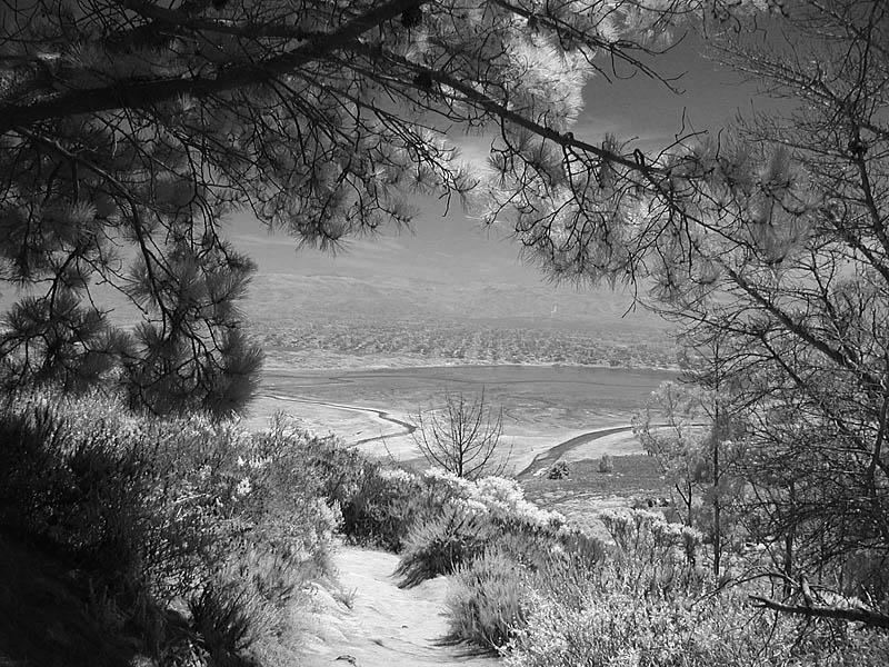 Trail to mudflats in Morro Bay CA