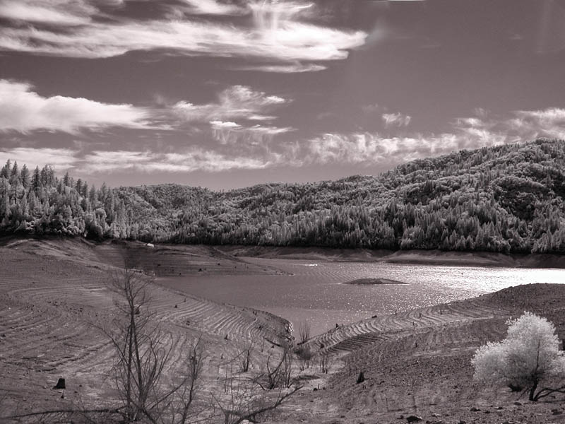 Lake Shasta early morning (infrared)