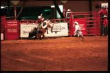 bull rider and bull fighter
