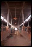 inside the stockyards