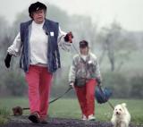 Dog Walkers.jpg