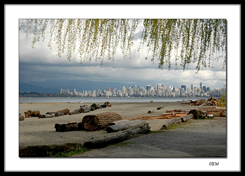 Vancouver skyline from Spanish Banks