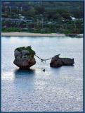 Meoto Iwa - Wedded Rocks