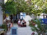 Under the age-long sycamore tree in Pyrgos Square