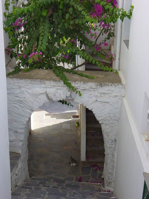 Steps down to arch... in Triantaros