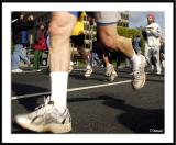 ds20050424_0345awF Legs 2.jpg