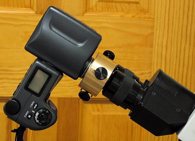 Zarf Adaptor