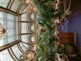 Palace-hotel-3MpixDSCF0027.JPG