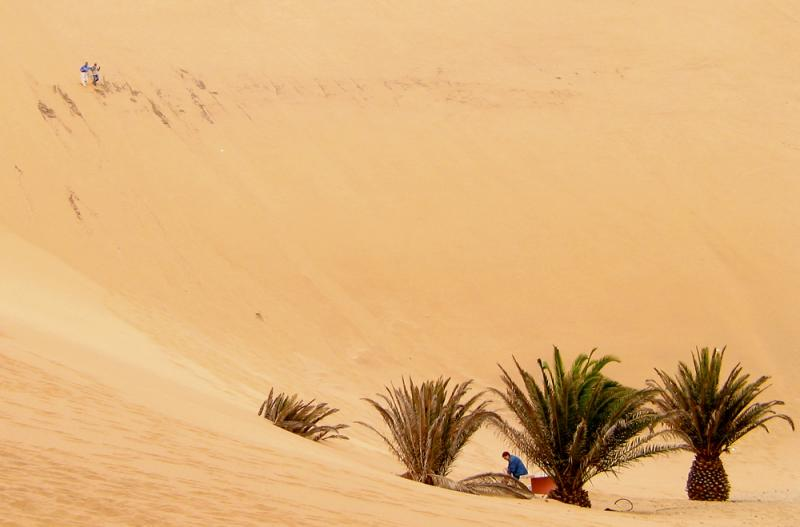 Descent from the dune, Namib Desert,  Namibia, 2002