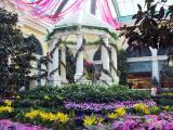 Bellagio flower garden.