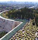 Getty - the Cactus Garden.
