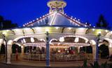 The Carousel - Terryd