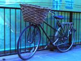 The Solitary Bicycle by Violet