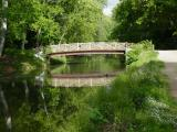 A Bridge on the C&O Canal by Ray Woltman