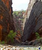 Heading to the Narrows, 1by Howdy