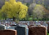 Côte des Neiges Cemetery, Montreal