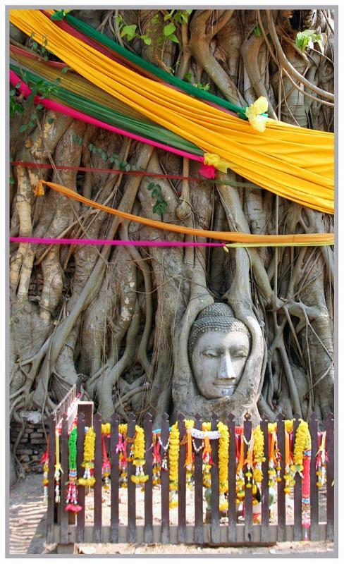 Chaiwat Worachetwarawat at Wat Mahathat