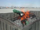 The cactus must burn