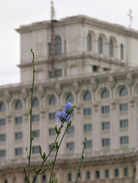 Bucharest - Palace of Parliament