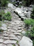 Cobble Stone Paths...