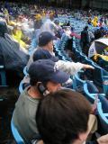 Yankee Fans on Left.jpg
