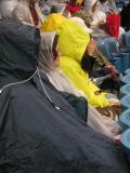 Yankee Hardy Fans.jpg