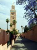 Marrakech at last!