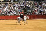 Bull Fight, Sevilla, Spain