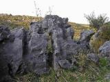 Sculptures de dolomie noire