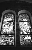 Stained Glass of Notre Dam