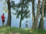 Fishing near the weir