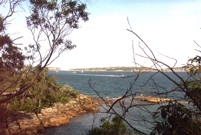 View from Chowder Head