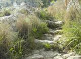 Pantalica - Hiking Trail