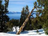 Lake Tahoe Scenes