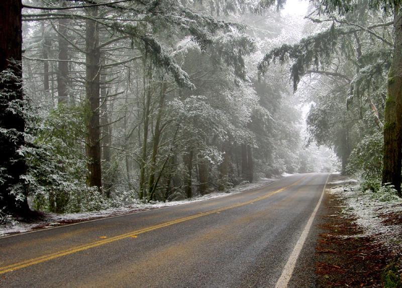 <b>Skyline Drive in the Snow</b><br><em><font size=-1>by Rayna</font></em>