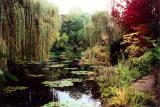 Monet's Lily Pondby Loren Charif